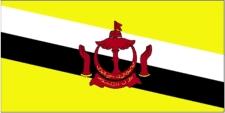 MRCP PACES dates in Brunei
